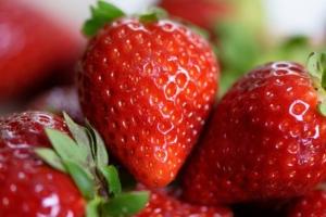 神戸フランツ|苺トリュフは美味しい?口コミ評判を徹底調査!